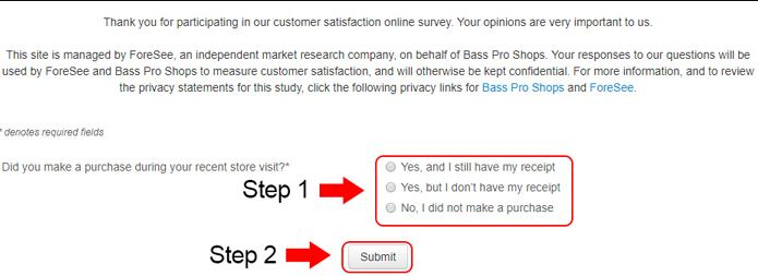 Basspro Survey steps