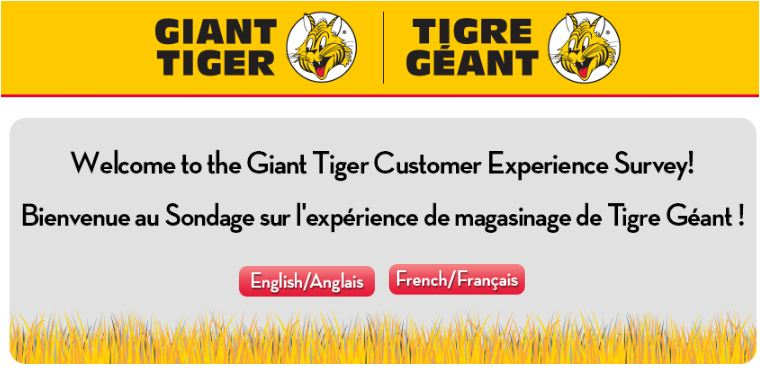 giant tiger survey