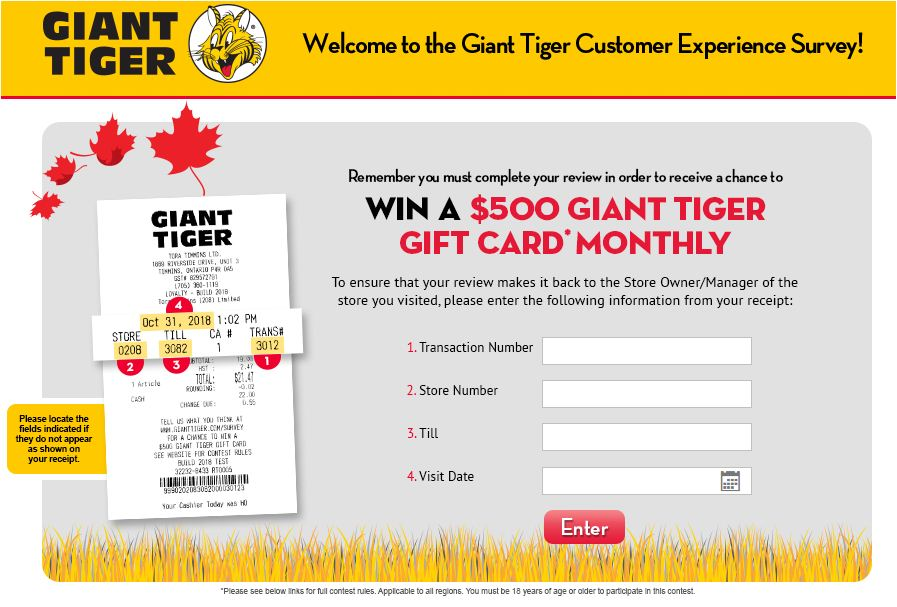 giant tiger guest experience survey